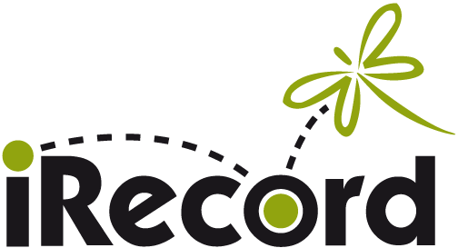 iRecord logo text