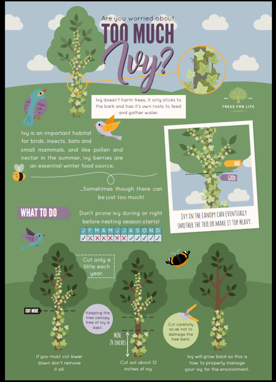 Jersey Trees for Life Ivy Poster