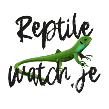 reptile watch logo with cartoon green lizard